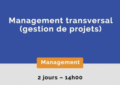 Management transversal (gestion de projets)