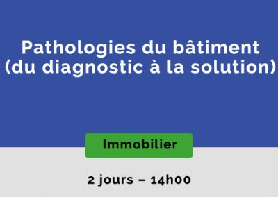 Pathologies du bâtiment : du diagnostic à la solution